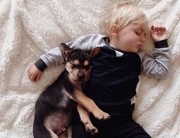 萌度超標!小孩和小狗每天一起睡午覺7