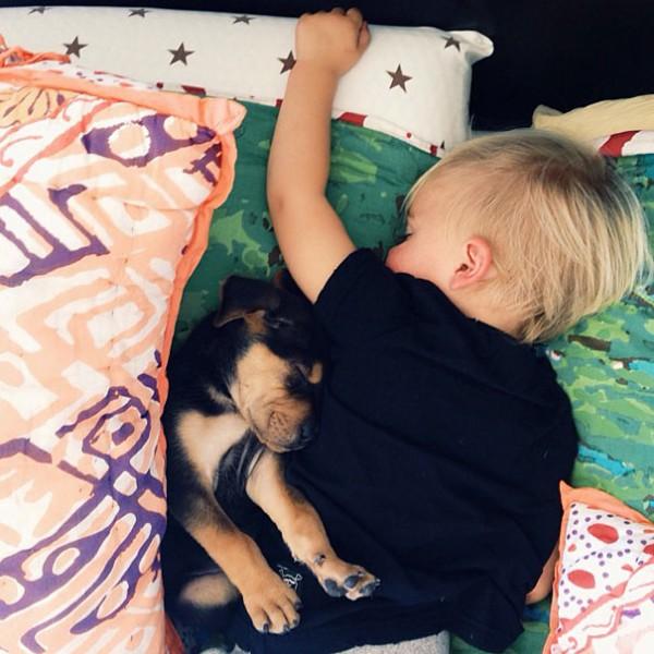 萌度超標!小孩和小狗每天一起睡午覺9