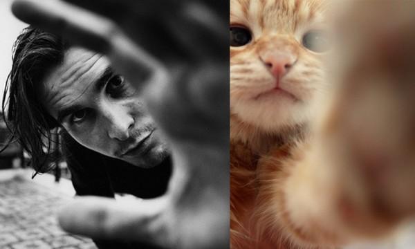 還是一樣性感!男人與貓做一樣的動作20