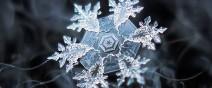雪花上的花紋,一生至少要微距看過一次