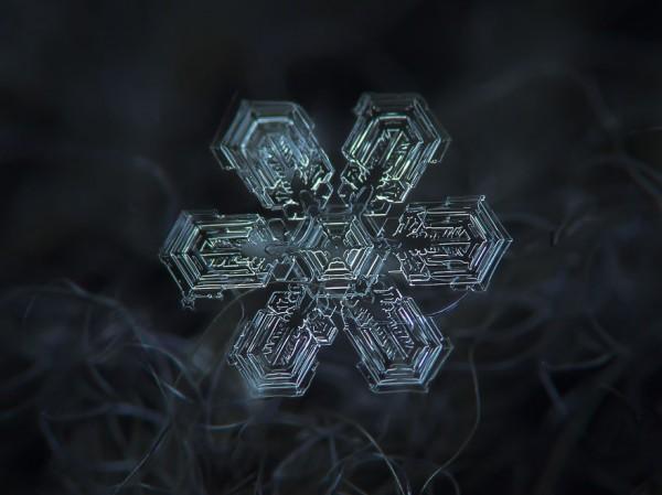 雪花上的花紋,一生至少要微距看過一次11