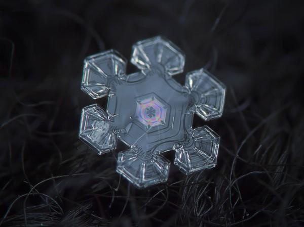 雪花上的花紋,一生至少要微距看過一次12