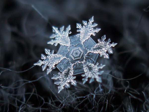 雪花上的花紋,一生至少要微距看過一次2