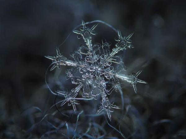 雪花上的花紋,一生至少要微距看過一次4