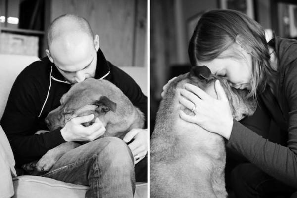 養過寵物的人會懂...寵物訣別前的最後歡樂時光攝影集12