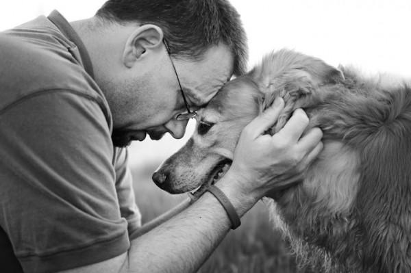 養過寵物的人會懂...寵物訣別前的最後歡樂時光攝影集3