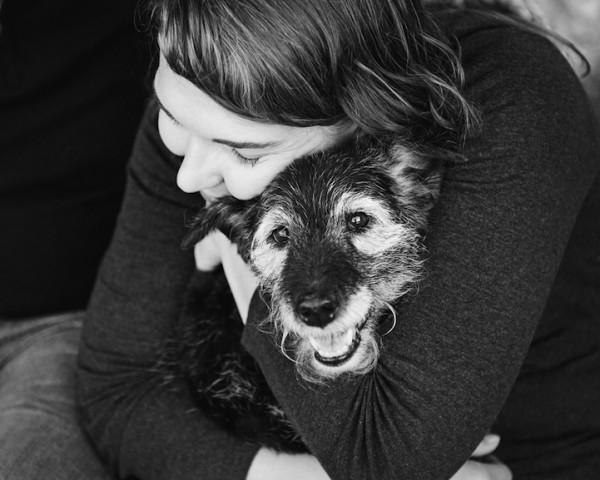 養過寵物的人會懂...寵物訣別前的最後歡樂時光攝影集5