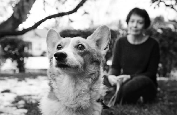 養過寵物的人會懂...寵物訣別前的最後歡樂時光攝影集8