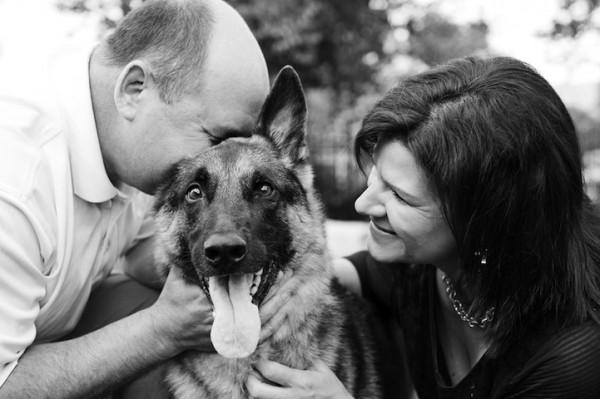 養過寵物的人會懂...寵物訣別前的最後歡樂時光攝影集9