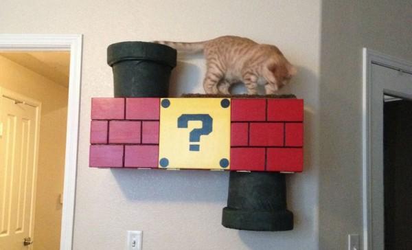 超級喵莉歐!貓鑽進瑪莉歐水管是世界上最美好的事2