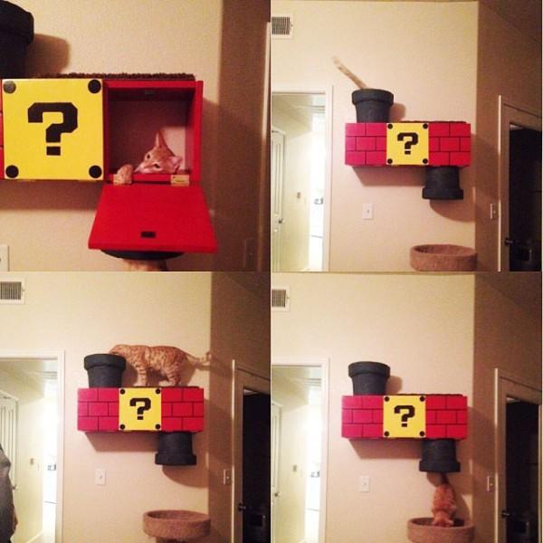 超級喵莉歐!貓鑽進瑪莉歐水管是世界上最美好的事3