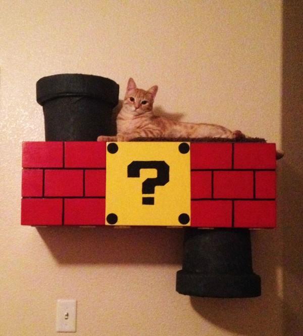 超級喵莉歐!貓鑽進瑪莉歐水管是世界上最美好的事4