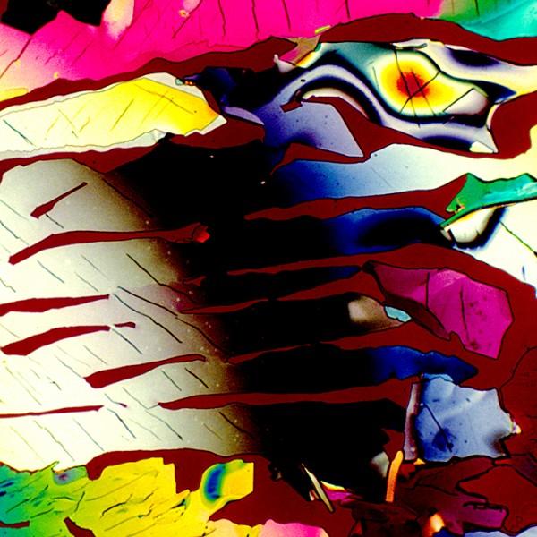 顯微鏡下的各種酒,像一幅幅美麗的油畫08