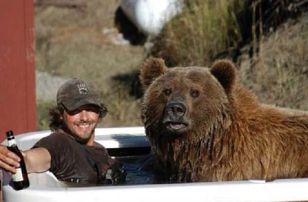 人類收養兩隻野熊16