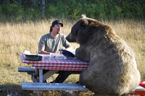 人類收養兩隻野熊19
