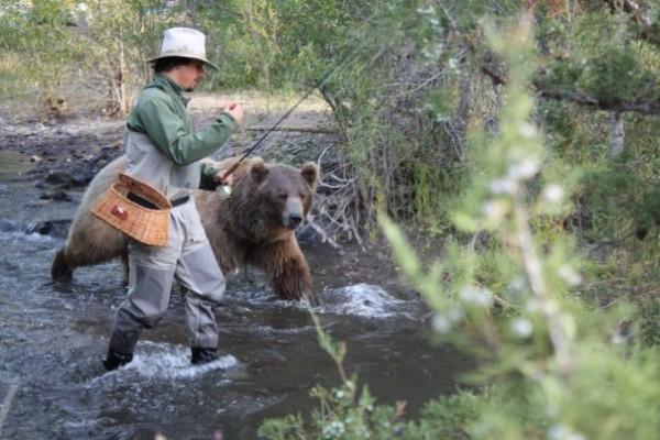 人類收養兩隻野熊20