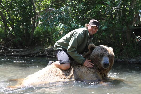 人類收養兩隻野熊21