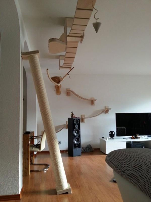 貓咪遊樂園3