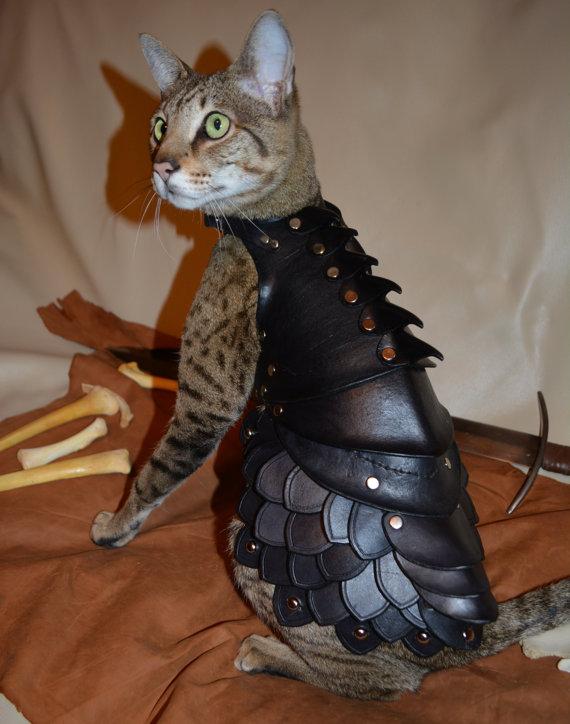 貓星人武裝升級1