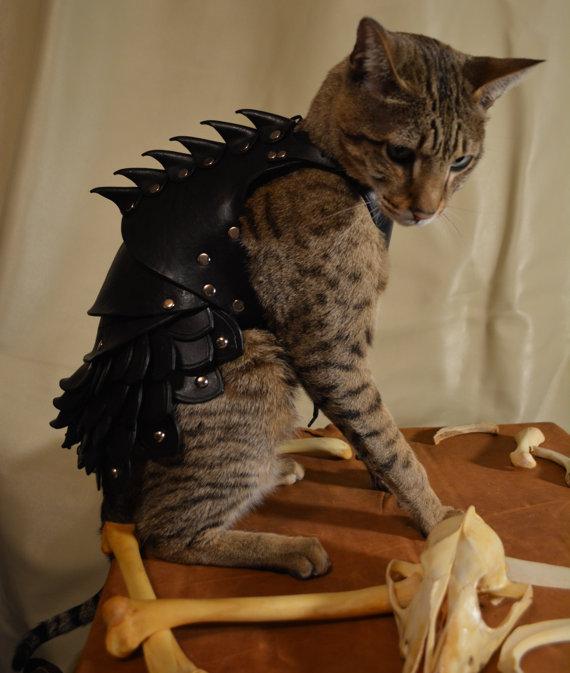貓星人武裝升級2