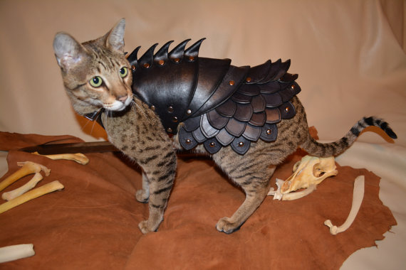 貓星人武裝升級3