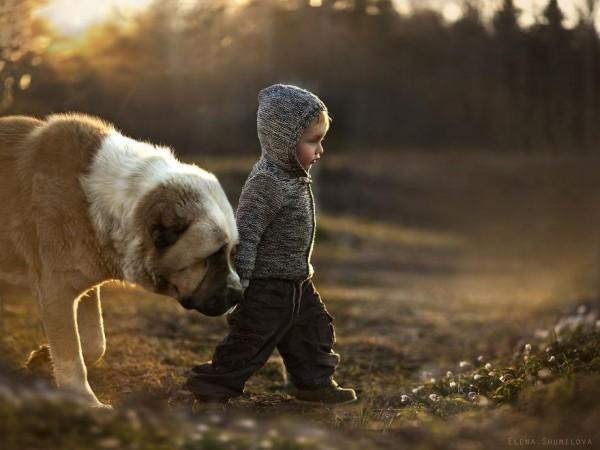 農場裡和動物一起長大的兩個孩子11