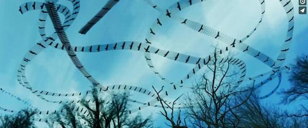 飛翔的痕跡