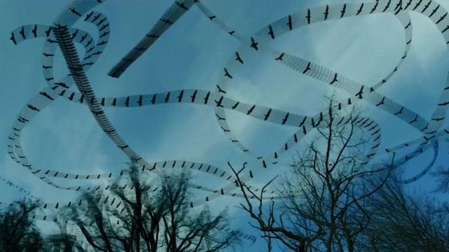 飛翔的痕跡2