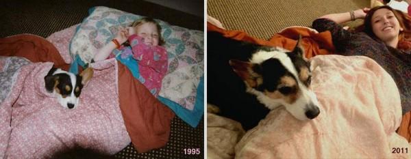 寵物長大後10