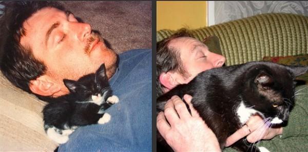 寵物長大後14