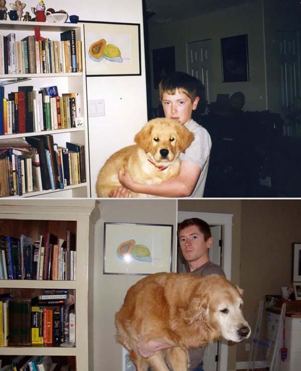 寵物長大後18