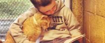讀書給貓聽的孩子0