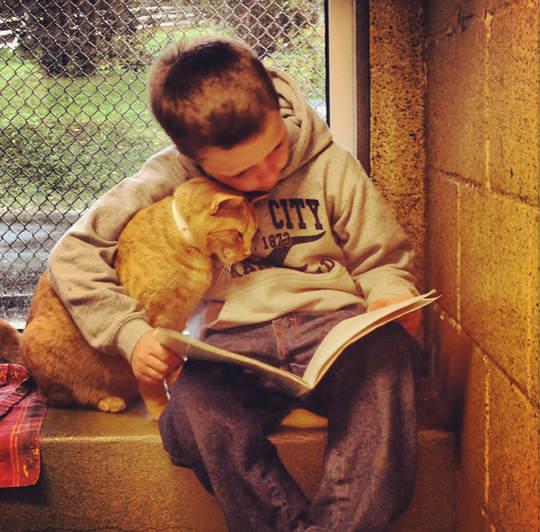 讀書給貓聽的孩子1