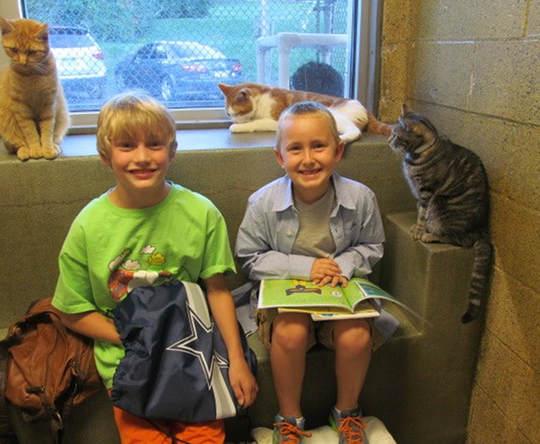 讀書給貓聽的孩子3