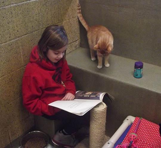 讀書給貓聽的孩子5