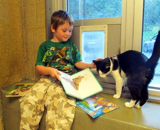 讀書給貓聽的孩子8