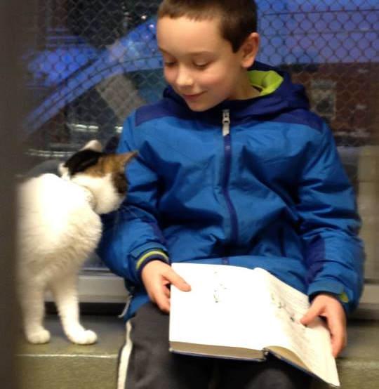 讀書給貓聽的孩子9