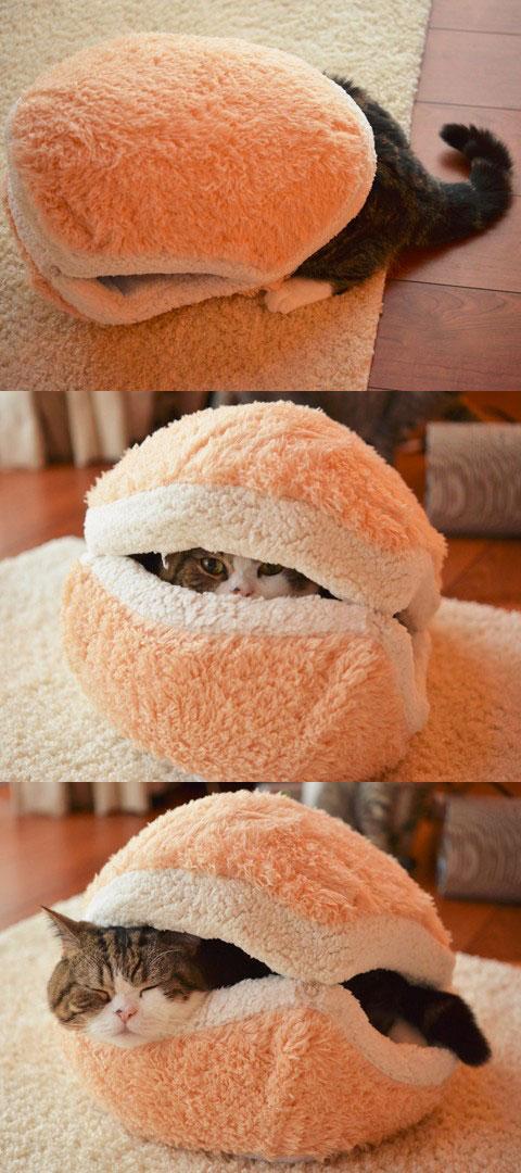 貓咪漢堡2
