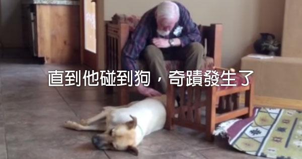 失語的爸爸在跟狗玩時,說出了這些話