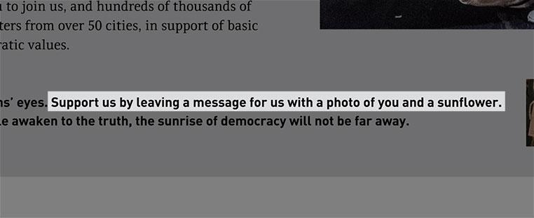 democracy5