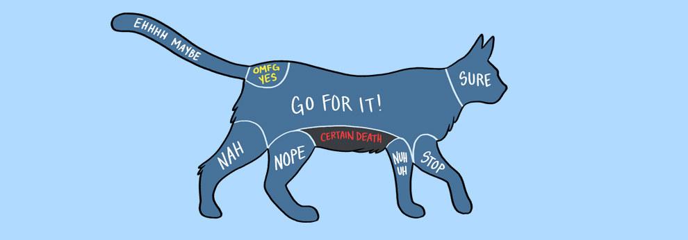 如何摸寵物1