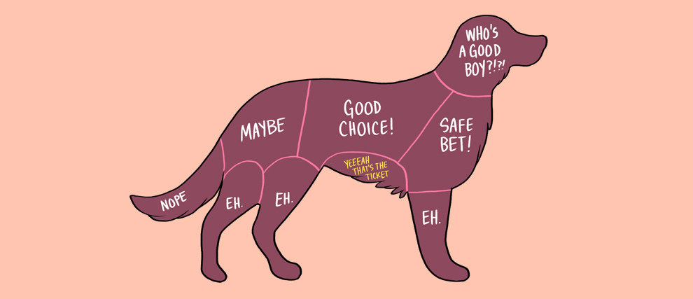 如何摸寵物2