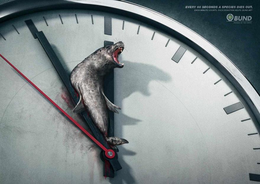 動物廣告11