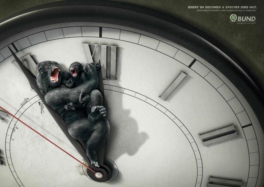 動物廣告12