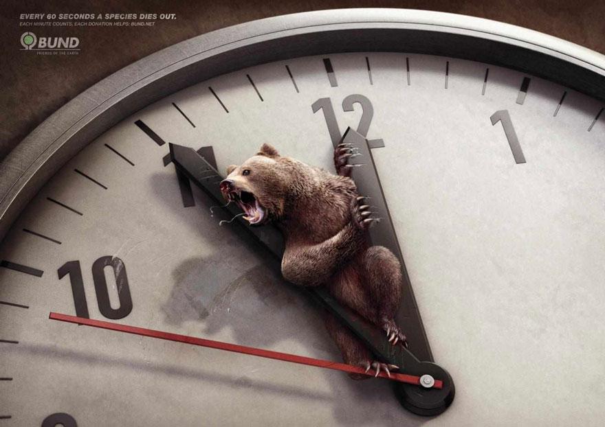 動物廣告13