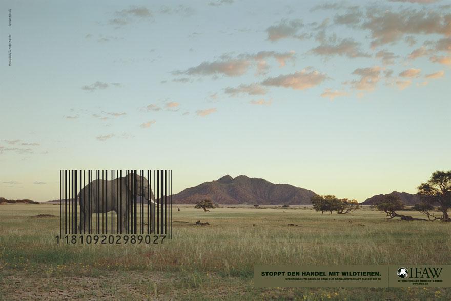 動物廣告142
