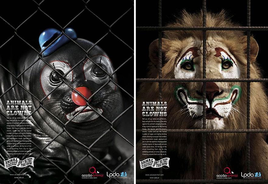 動物廣告22