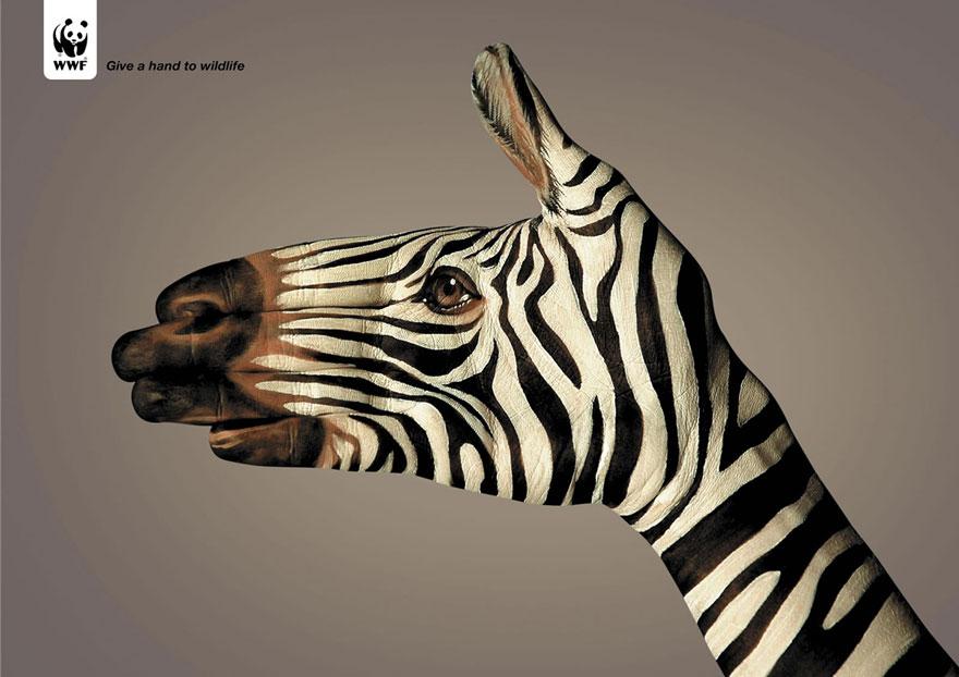 動物廣告233