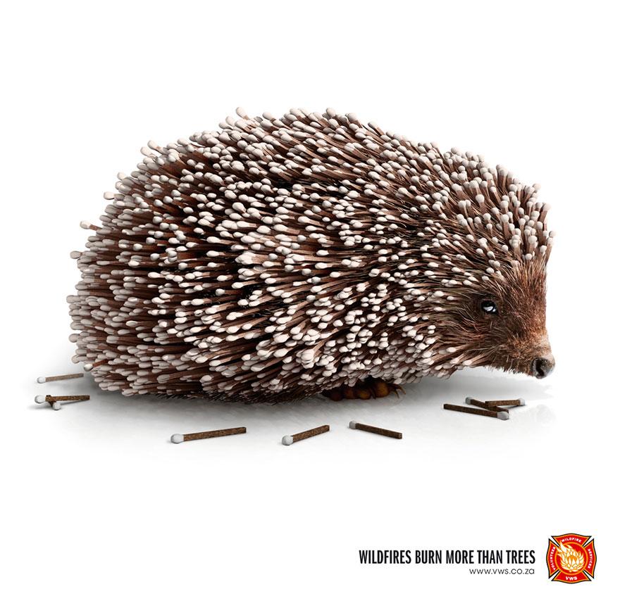 動物廣告271