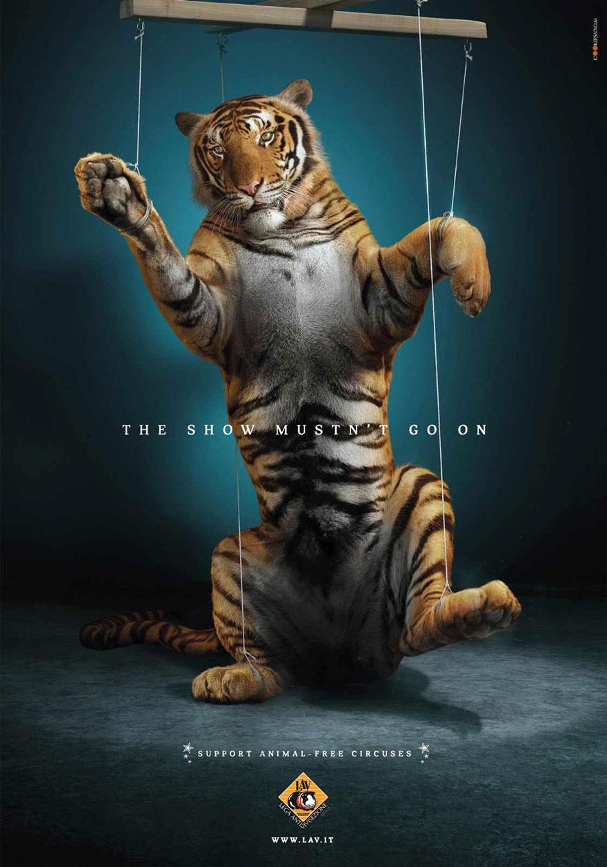 動物廣告291